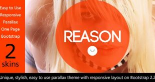 Reason HTML5 Web Template Download